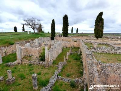 Yacimiento Clunia Sulpicia - Desfiladero de Yecla - Monasterio Santo Domingo de Silos - Yacimiento a